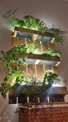 indoor growing  lights  leslie halleck