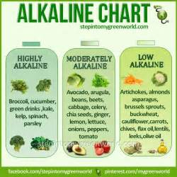 1000 ideas about alkaline foods on food charts diet and acidic foods
