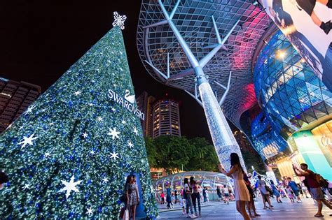 cost of christmas trees at orchard hardware lights singapore dresses up its malls and streets for the festive season abc news