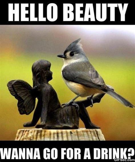 Viral Meme - best memes 2015 viral viral videos
