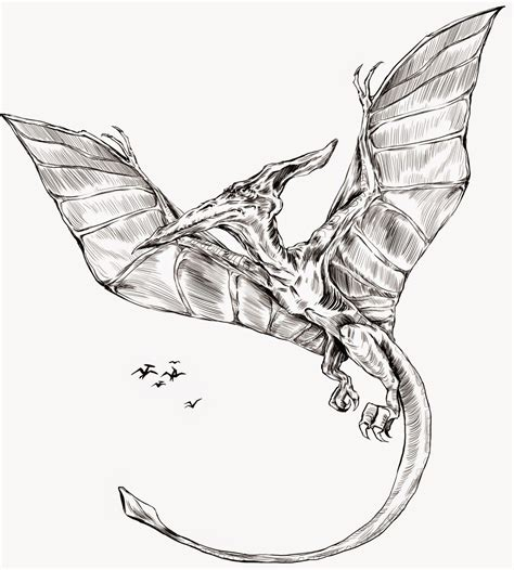 pterodactyl tattoo shadiah sketches pterodactyl for hearthsong