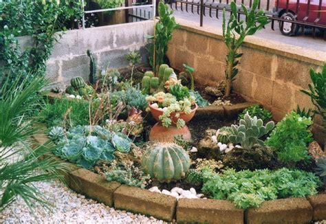 giardino con piante grasse giardini piante grasse piante grasse realizzazioni con
