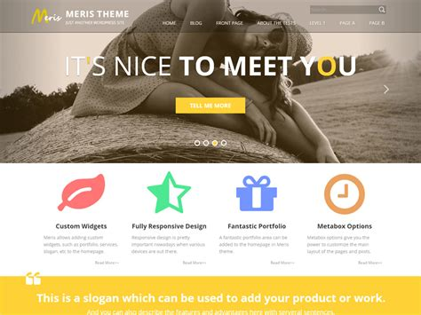 themes slideshow wordpress 27 beautiful free wordpress blog themes wpsnow