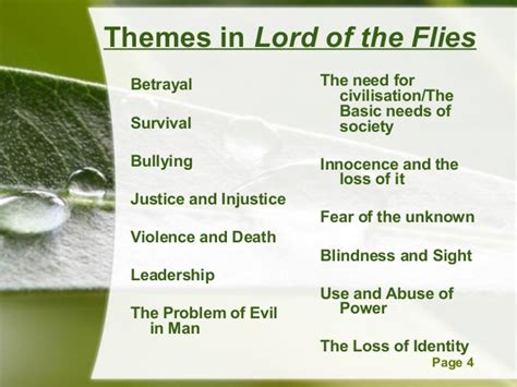 themes of lord of d flies 3 lotf exam prep