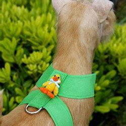 Setelan Piyama Pajamas Paul Frank Jumbo Xl susan lanci jumbo ducky harness designer harnesses at glamourmutt