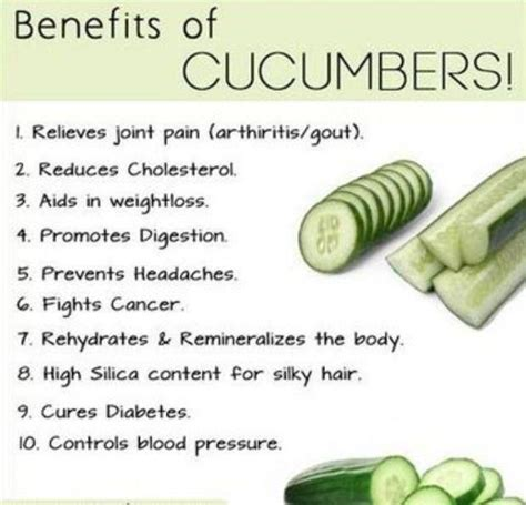 benefits of cucumber health benefits of cucumbers shaq attack weight loss