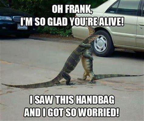 Lot Lizard Meme - egorich ego memes when alligators reunite