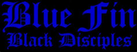 black disciples colors black and blue colors 36 hd wallpaper
