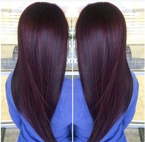 chocolate plum hair color plum brown paul mitchell trends plum pinterest