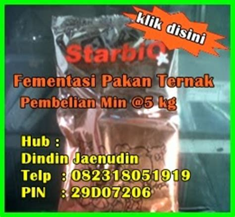 Starbio Ternak Kambing hijauan pakan ternak starbio fermentasi pakan ternak