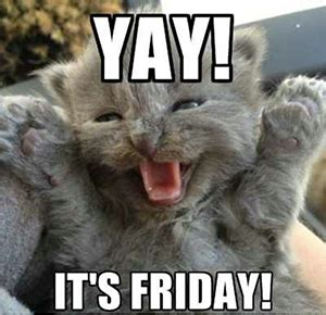 Happy Friday Meme Funny - happy friday memes to share royal vegas online casino blog