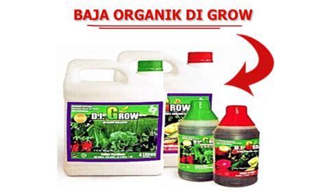 Di Grow baja organik di grow