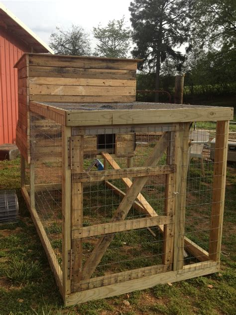 backyard chicken pens southern sunflower seeds backyard chicken coop