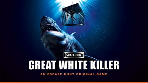 cage diving  great white sharks  rundle mall