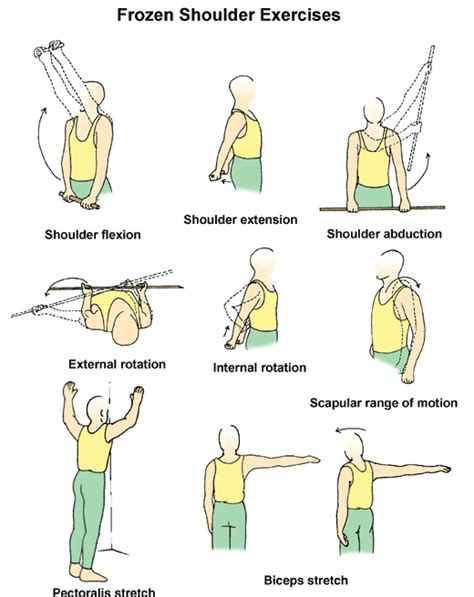 sle of exercise frozen shoulder stretches i do these to improve my range of motion fibro and lupus