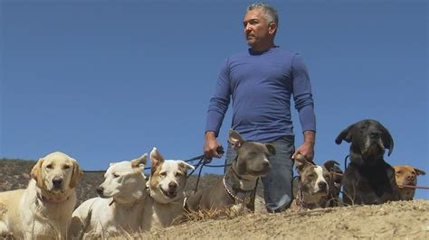 cesar millan s cesar millan helps veteran with ptsd on nation today