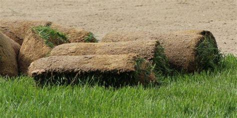 costo tappeto erboso al mq costo tappeto erboso al mq stunning costo tappeto erboso