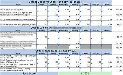 12 week year templates study on the 12 week year
