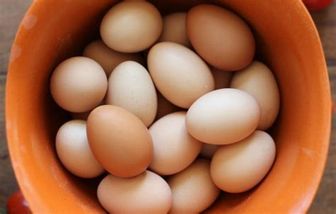 Backyard Chicken Eggs by Mavis Garden Heirloom Tomatoes Fresh Eggs And More