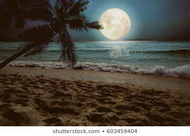 full moon beach images stock  vectors shutterstock
