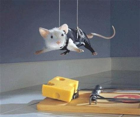 Mouse War snooping around legends mice don t like cheese
