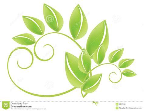 Foto Vector hojas verdes vector foto de archivo imagen 6317840