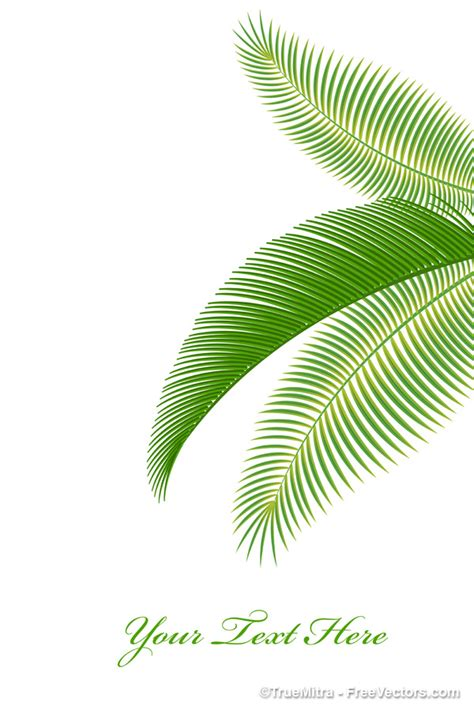 printable palm tree leaves royalty free vector art palm tree leaves for graphic