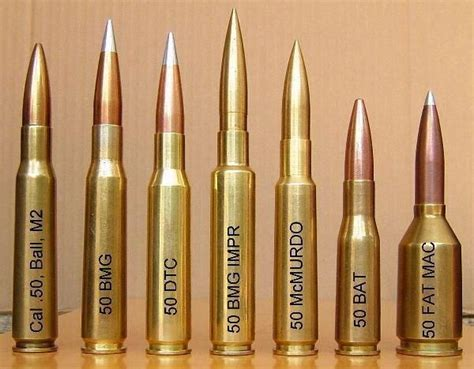 beowulf 50 cal never knew there were so many 50 cal