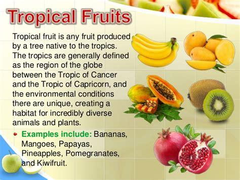 fruit definition fruits