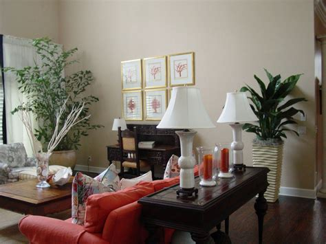 living room with plants big living room plants 22 design ideas plants for your