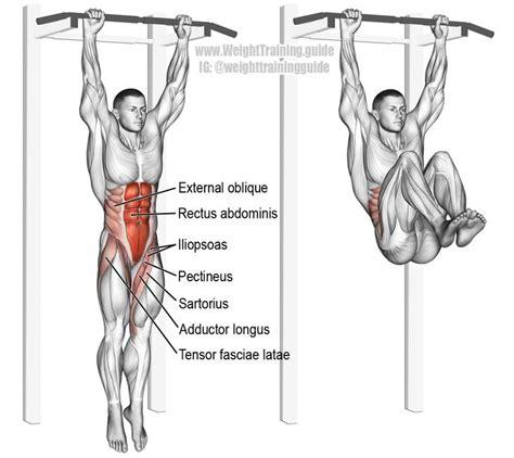 hanging leg  hip raise exercise guide  video core