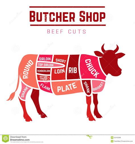 beef cuts diagram butcher pics for gt beef illustration