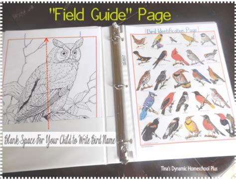 printable bird journal free bird journal bird identification page for kids