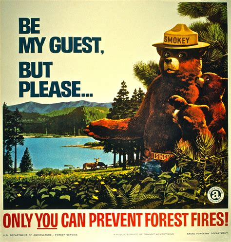 only you can prevent forest fires vintage ads