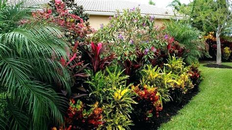 tropical garden ideas tropical garden ideas uk justcope co