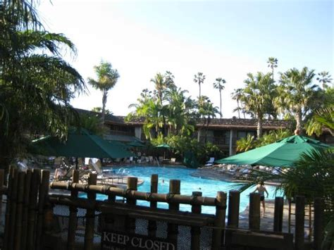 catamaran resort hotel and spa pool hotel lobby with koi pond and waterfall picture of