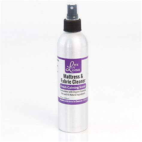 best upholstery cleaner solution compare price to sofa upholstery cleaner dreamboracay com