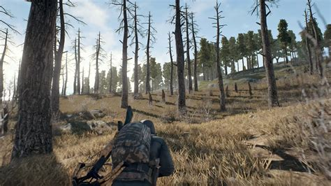 playerunknowns battlegrounds  coming   console