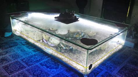Tips To Build Aquarium Coffee Table Interior Decorating