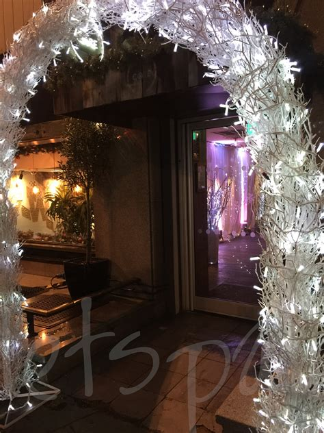 winter crystal light  branch arch  lets party