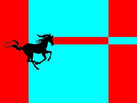 Flag Banner Pony 48 of the best flags on earth lazer