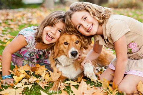 family puppy who we are houston best pet sitting and walking service