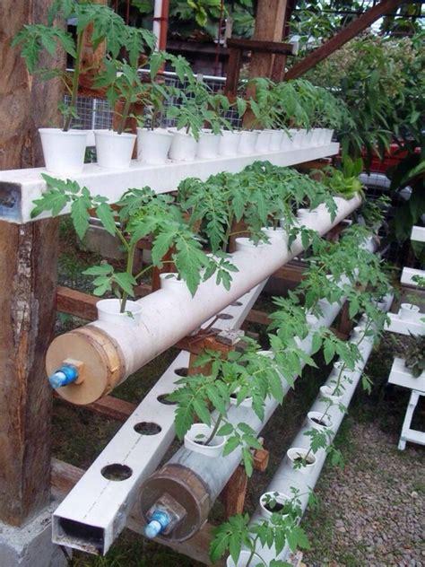 easy  diy hydroponic gardening ideas