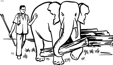 thailand elephants free colouring pages