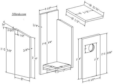 kestrel house plans kestrel bird house plans elegant nestbox plans and dimensions for kestrel eastern