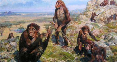 Kaso 3d Evolion 1925 il bambino di taung australopithecus africanus