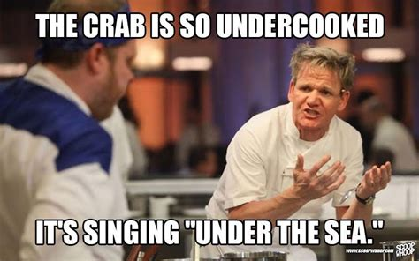 Gordon Ramsey Meme - these memes of gordon ramsay insulting people are too damn