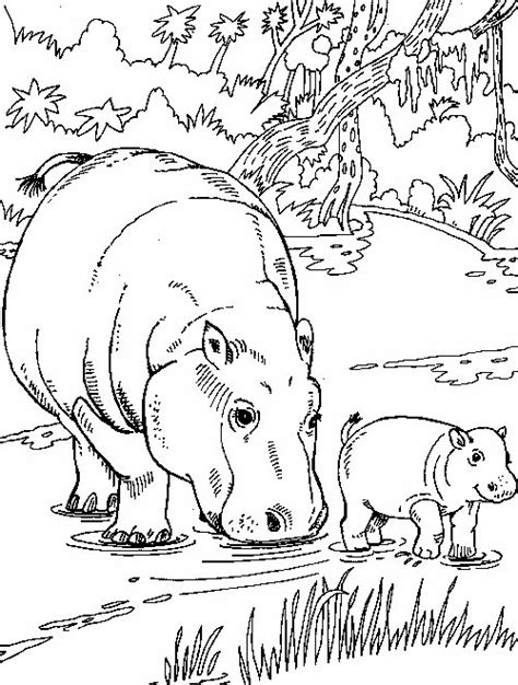 hippo coloring pages online hippo coloring pages coloringpages1001 com