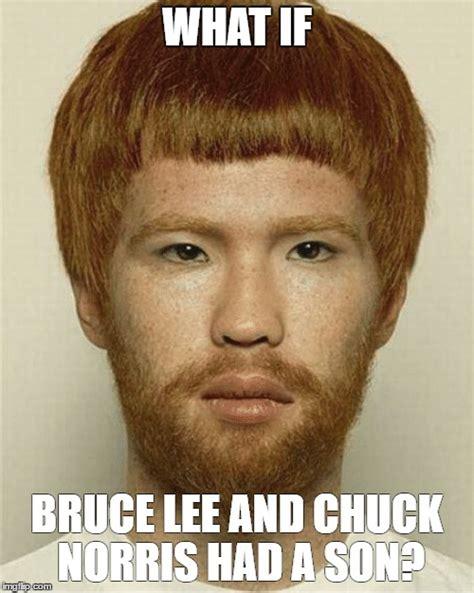Bruce Lee Meme - bruce lee meme chuck norris www pixshark com images