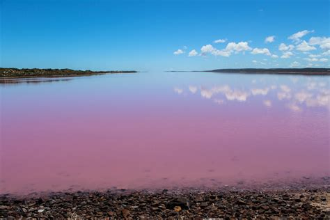 pink lake kalbarri perth perth
